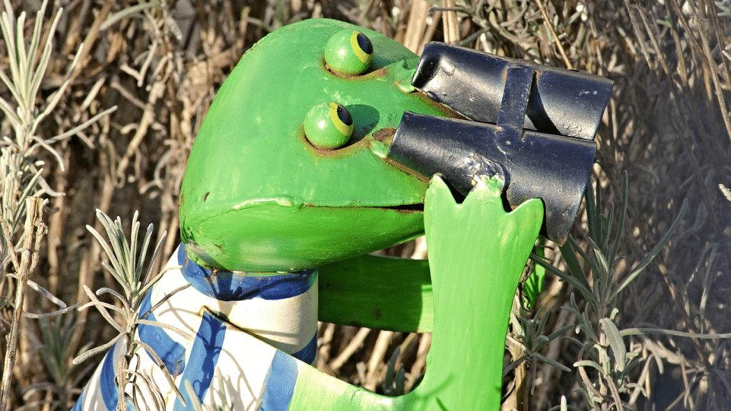A frog is looking through binoculars. He wants to know what you can learn when your neighbor sells their home.