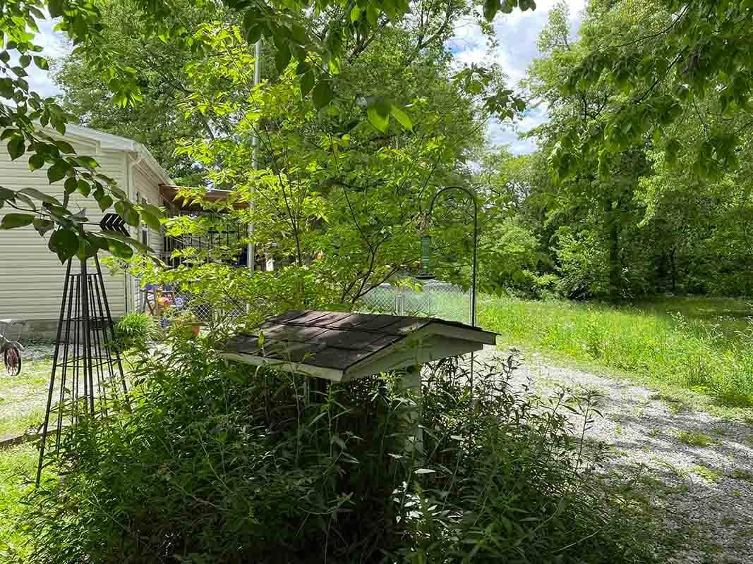 3409 Frisse Ave backyard